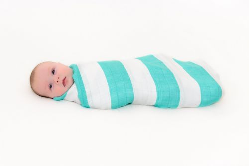 Great Swandoodle - Spearmint Bebe ~ Sold Out!